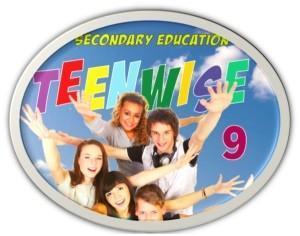 9. sınıf ingilizce ders kitabı teenwise